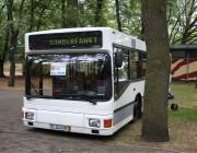 bild-bus-1